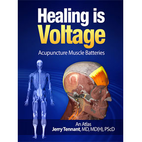 Healing is Voltage | Acupuncture Muscle Batteries