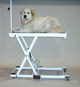 Harvey lift Hi/Lo veterinary table